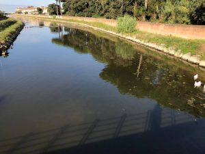 Dal ponte di via Fratti